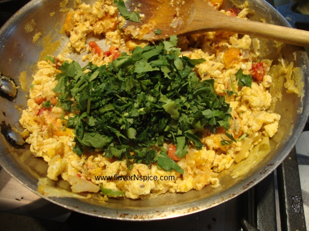 Indian-scrambled-eggs-13