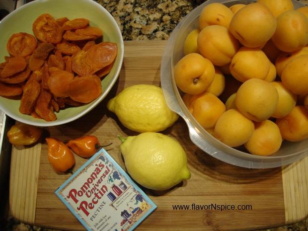 apricot-habanero-chutney-1