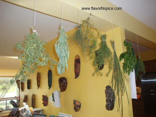 dried-herbs-3