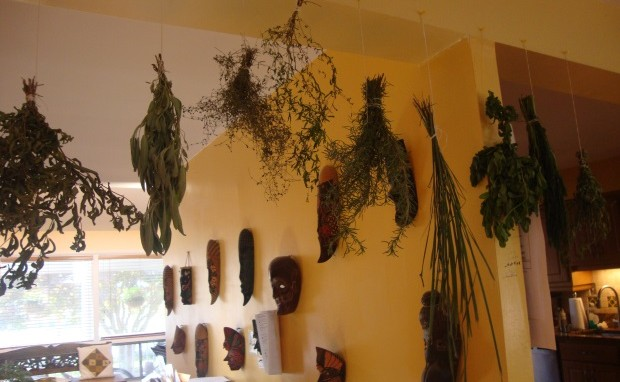 Homegrown, Homemade Dried Herbs